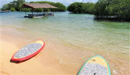 LEMBONGAN AND MANGROVES (INCL STAND UP PADDLE BOARD)