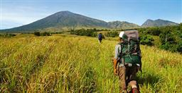 HIKE ALONG THE SOUTHERN SLOPE OF MOUNT RINJANI